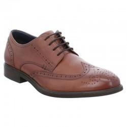 Klasiskas brūnas vīriešu liela izmēra kurpes Josef Seibel 42205
