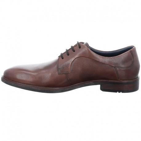 Klasiskas brūnas vīriešu liela izmēra kurpes Josef Seibel 42217