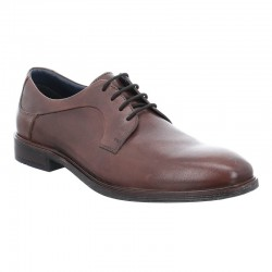 Classic brown men's shoes in big sizes Josef Seibel 42217